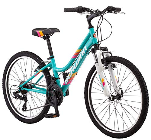 SCHWINN HIGH TIMER YOUTH/ADULT MOUNTAIN BIKE