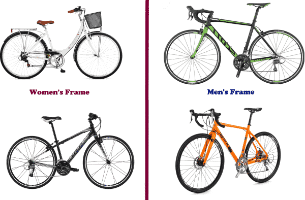 Comparison Between Bike Frames