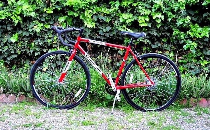 Giordano Acciao Road Bike displayed in nature