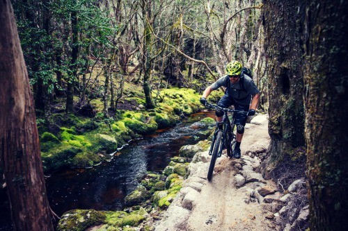 Best Bike Trails