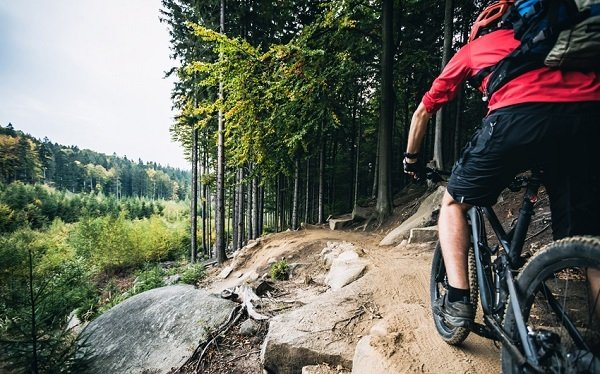 What's the best mountain bike