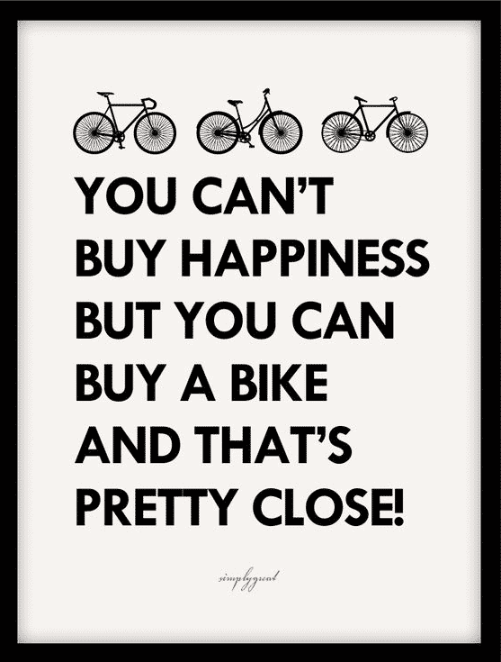 Quote About Buying a Bike