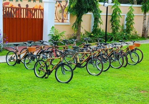 Environmental Effects of Bamboo Bike