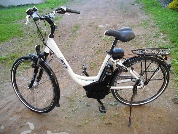 Pedelec Electric Bike