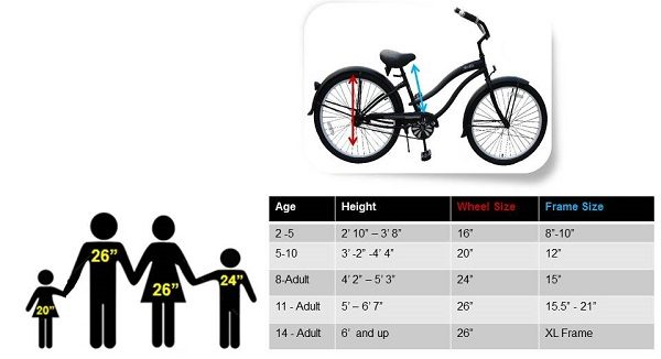 Cruiser size chart