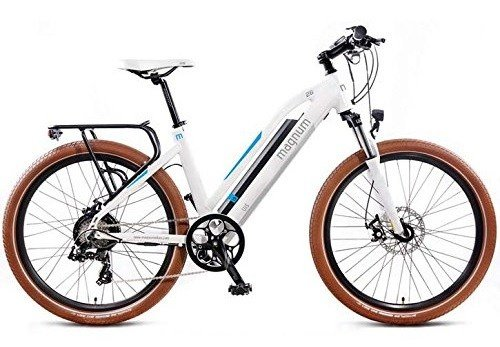 UI5 Electric Bike