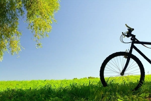 Bike in grass.