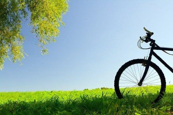 Bike in grass.