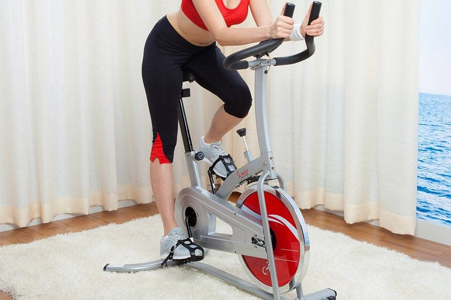 Sunny Health & Fitness SF-B901 Review