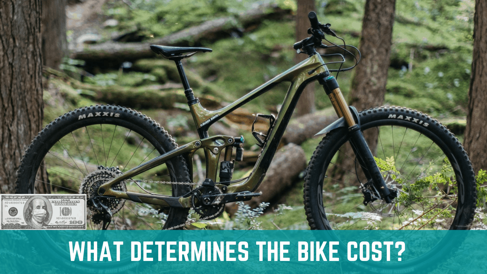 what-determines-the-bike-cost
