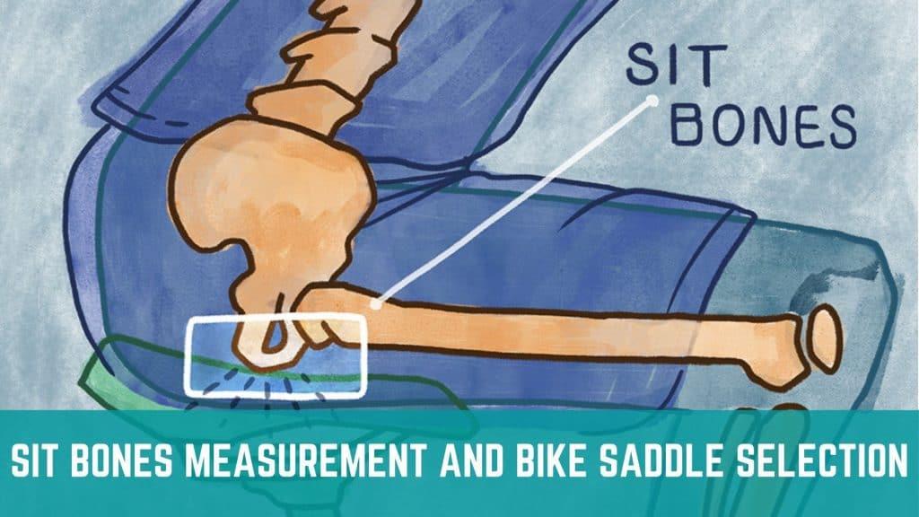 Sit Bone Measurement and Bike Saddle Selection