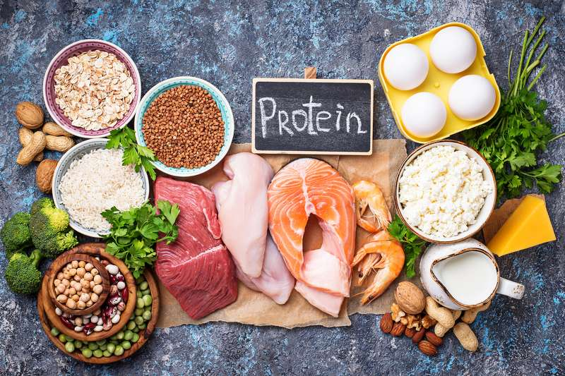 Protein Intakes for Nutrition